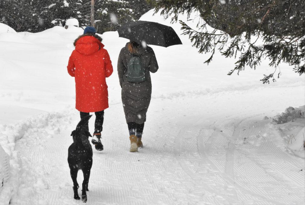 Kaksi naista ja koira ulkoillemassa talvissäässä.